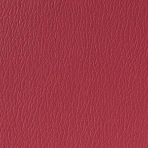 AM62Rasberry15020451239