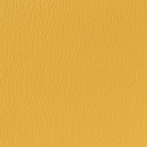 US-524-Golden-Corn