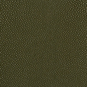 eel-cactus-textured-pattern
