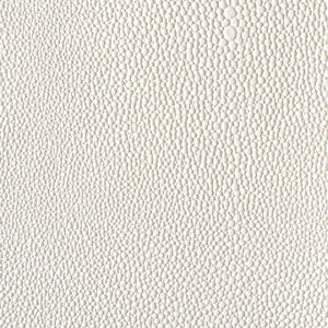 eel-white-textured-pattern
