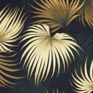 kailua-black